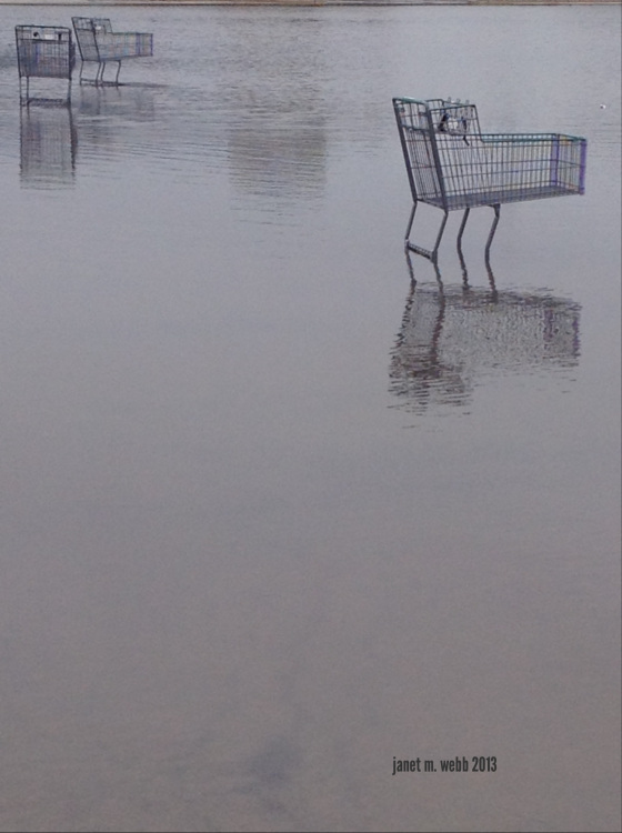 Waterlogged Trolleys